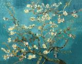 Tree Paintings - Blossoming Almond Tree by Vincent van Gogh