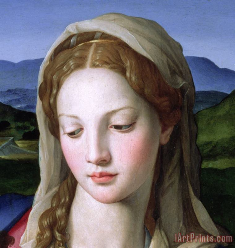 Mary painting - Agnolo Bronzino Mary Art Print