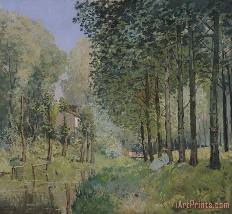 Edge of the Wood painting - Alfred Sisley Edge of the Wood Art Print