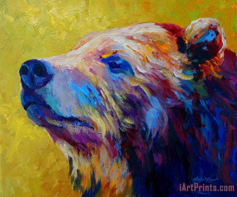 Marion Rose Pretty Boy Grizzly Bear Painting Pretty Boy Grizzly Bear Print For Sale