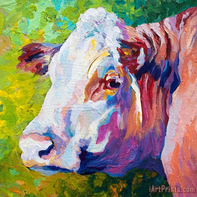 White Face Cow painting - Marion Rose White Face Cow Art Print