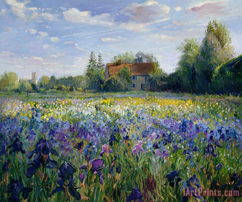Evening at the Iris Field painting - Timothy Easton Evening at the Iris Field Art Print