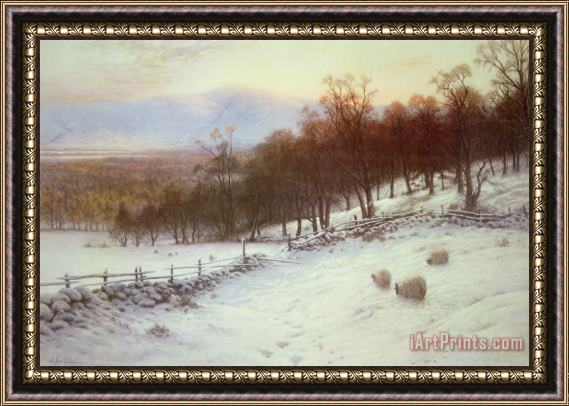 Joseph Farquharson Snow Covered Fields with Sheep Framed Print