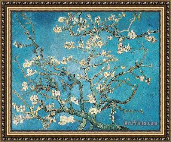 Vincent van Gogh Almond Branches In Bloom Framed Print