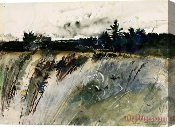 andrew wyeth Waldboro Woods Stretched Canvas Print