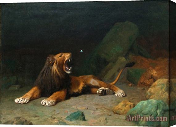 Jean Leon Gerome Lion Snapping at a Butterfly Stretched Canvas Print