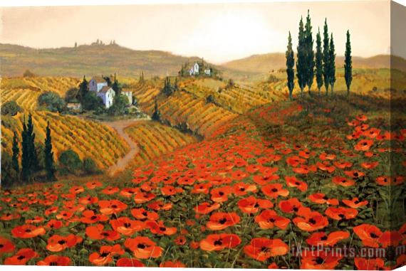 Steve Wynne Hills of Tuscany II Stretched Canvas Print / Canvas Art