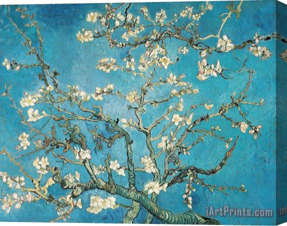 Vincent van Gogh Almond Branches In Bloom Stretched Canvas Print / Canvas Art