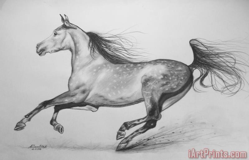 Galloping horse painting - Agris Rautins Galloping horse Art Print
