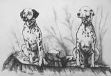Two dogs by Agris Rautins