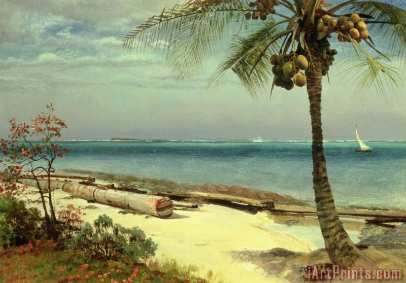Tropical Coast painting - Albert Bierstadt Tropical Coast Art Print