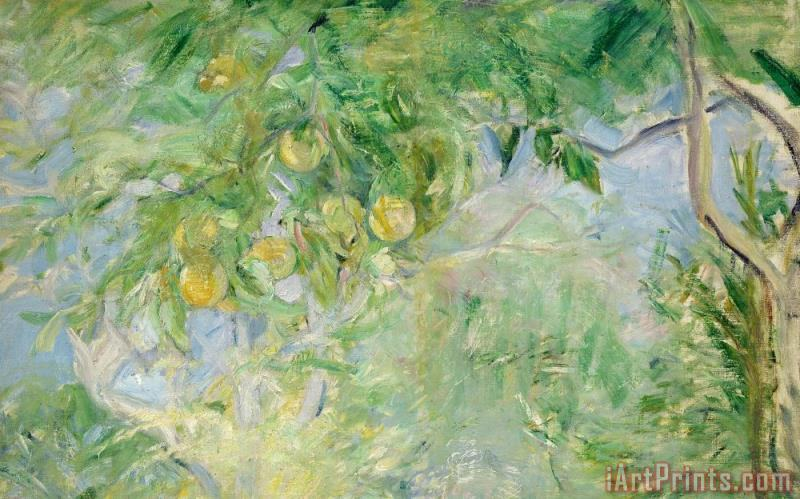 Orange Tree Branches painting - Berthe Morisot Orange Tree Branches Art Print