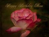 Happy Birthday Mom by Blair Wainman