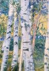 Tree Paintings - Birch Trees by Carl Larsson