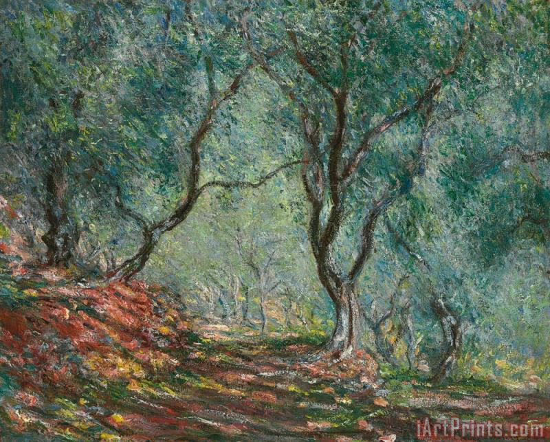 Claude Monet Olive Trees in the Moreno Garden Art Print