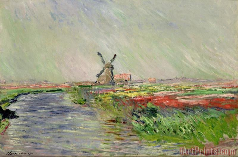 Tulip Field in Holland painting - Claude Monet Tulip Field in Holland Art Print