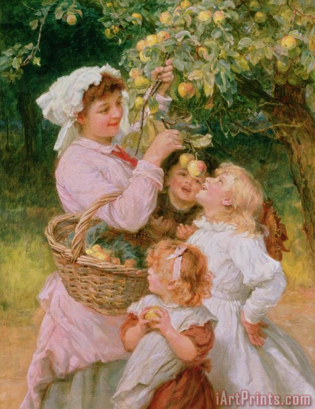 Bob Apple painting - Frederick Morgan Bob Apple Art Print