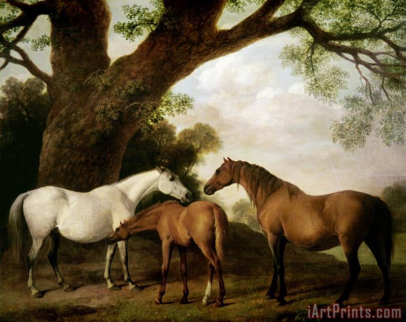Two Mares and a Foal painting - George Stubbs Two Mares and a Foal Art Print