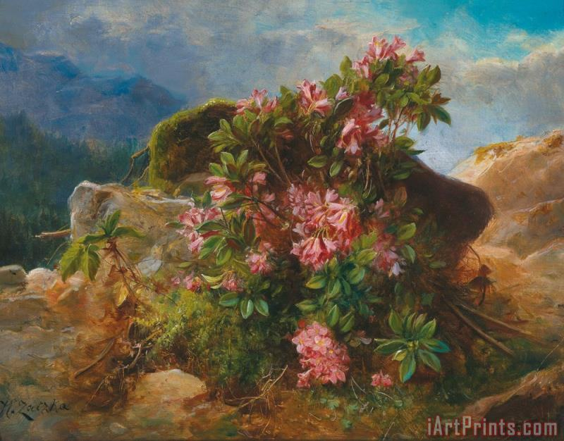 Alpine Flowers painting - Hans Zatzka Alpine Flowers Art Print
