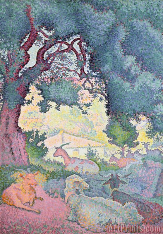 Landscape with Goats painting - Henri-Edmond Cross Landscape with Goats Art Print