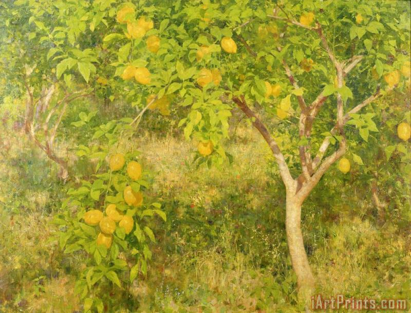 Henry Scott Tuke The Lemon Tree Art Print