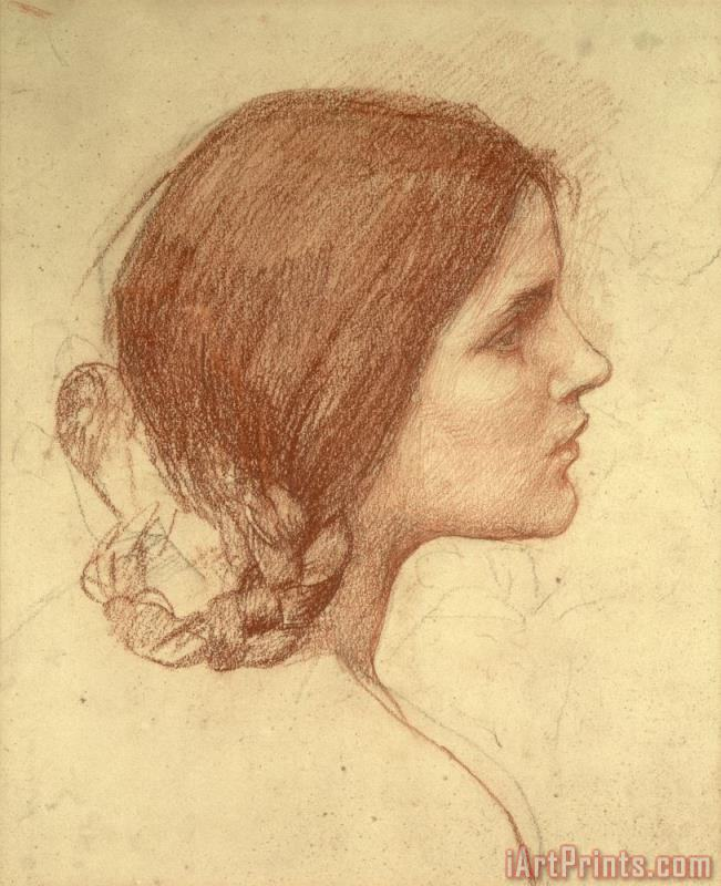 Head of a Girl painting - John William Waterhouse Head of a Girl Art Print