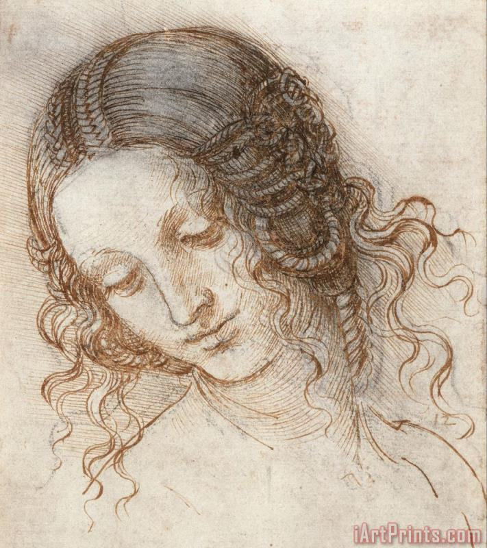 Leonardo da Vinci Leonardo Head Of Woman Drawing Art Print