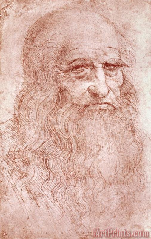 Leonardo da Vinci Portrait Of A Bearded Man Art Print