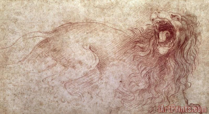 Leonardo da Vinci Sketch Of A Roaring Lion Art Print