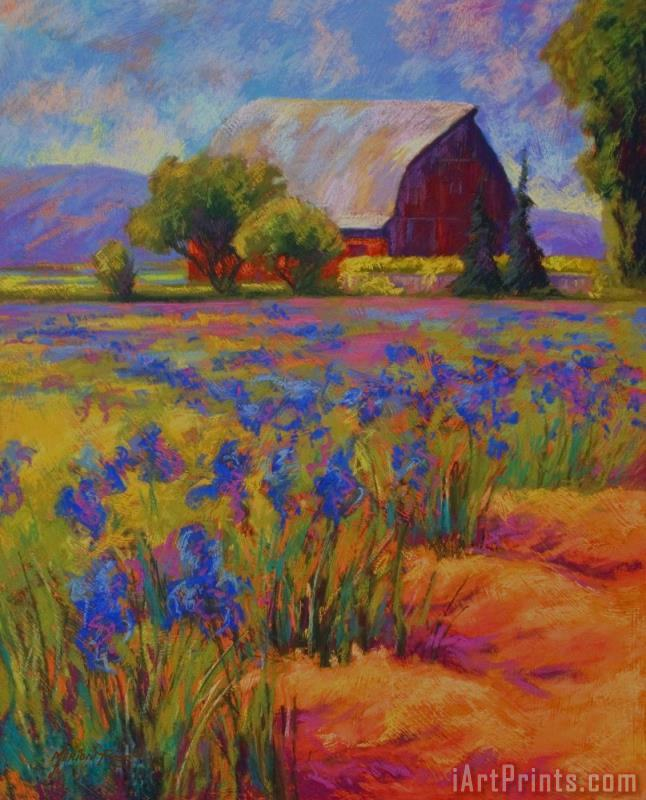 Iris Field painting - Marion Rose Iris Field Art Print