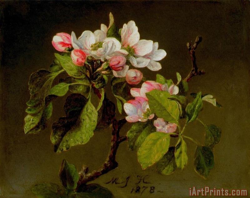 Martin Johnson Heade A Branch of Apple Blossoms And Buds Art Painting