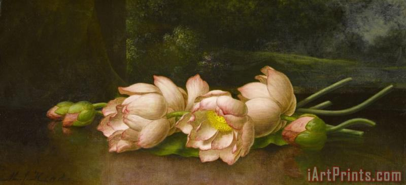 Martin Johnson Heade Lotus Flowers a Landscape Painting in The Background Art Print