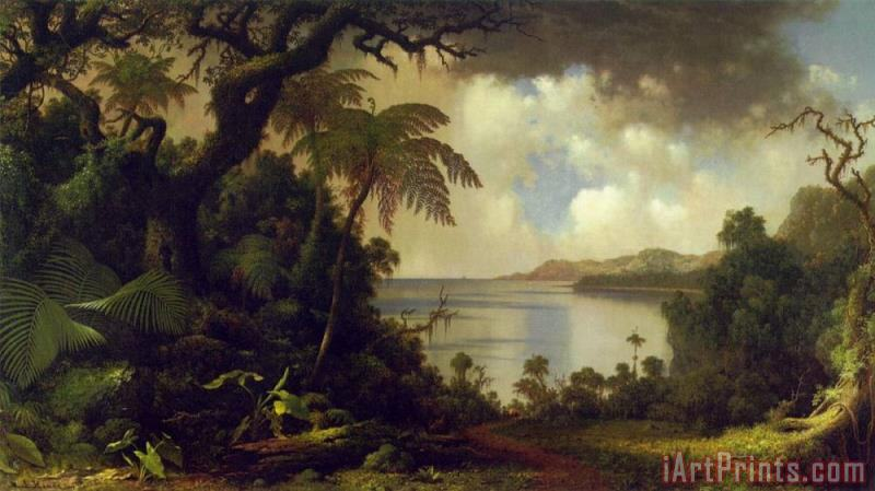View From Fern Tree Walk, Jamaica painting - Martin Johnson Heade View From Fern Tree Walk, Jamaica Art Print