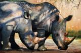 Rhinos in dappled shade. by Paul Dene Marlor
