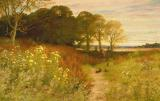 Landscape with Wild Flowers and Rabbits by Robert Collinson