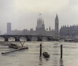 Westminster by Tom Young