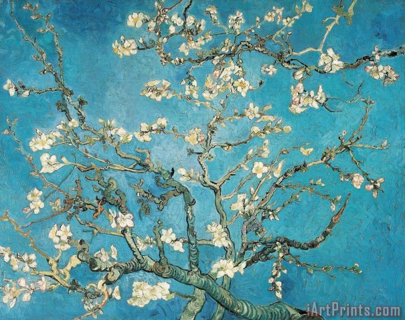 Vincent van Gogh Almond Branches In Bloom Art Painting