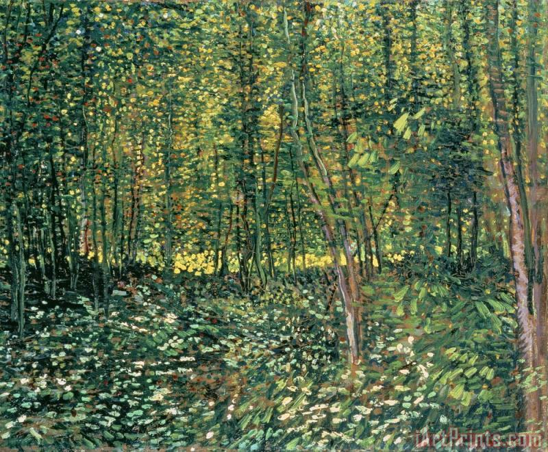 Vincent van Gogh Trees and Undergrowth Art Print